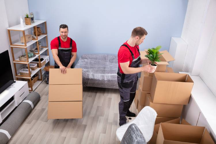 How Moving Companies And Packers Altered Our Lives In 2021